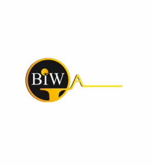 Best Imaging Web - BIW Agency