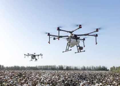 Innovation : des drones au service des chasseurs de frelons